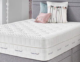 Synergy 2500 Mattress